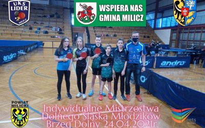 Ping Pong Milicz