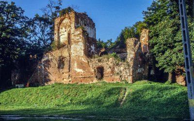 Zamek Milicz